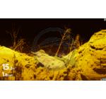 Humminbird Solix 15 Chirp Mega SI GPS halradar