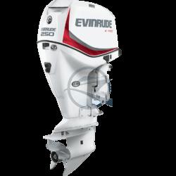 Evinrude E-Tec 250 DPX